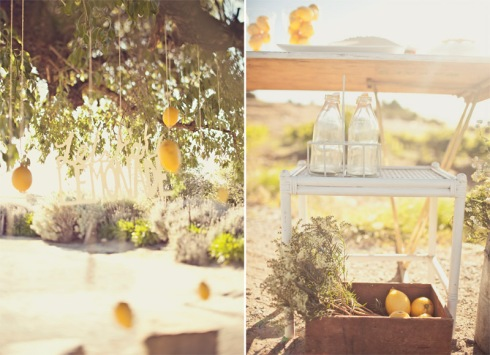 Vintage lemonade stand in engagement shoot