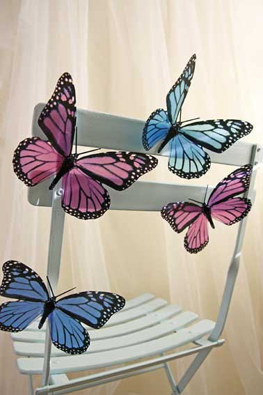 butterfly chair decoration